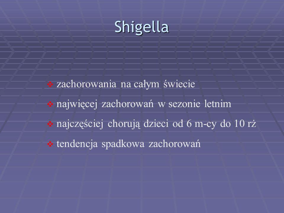 Shigella  zachorowania na całym świecie  najwięcej zachorowań w sezonie letnim  najczęściej chorują dzieci od 6 m-cy do 10 rż  tendencja spadkowa