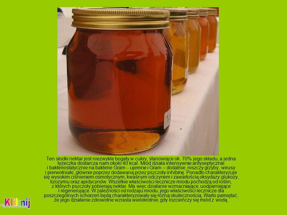 Ten słodki nektar jest niezwykle bogaty w cukry, stanowiące ok.