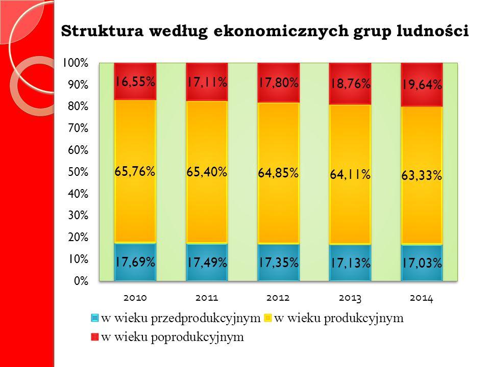 Struktura według ekonomicznych grup ludności