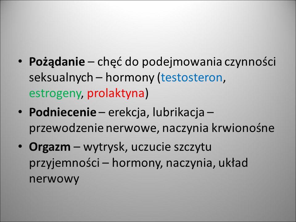 Pożądanie – chęć do podejmowania czynności seksualnych – hormony (testosteron, estrogeny, prolaktyna) Podniecenie – erekcja, lubrikacja – przewodzenie
