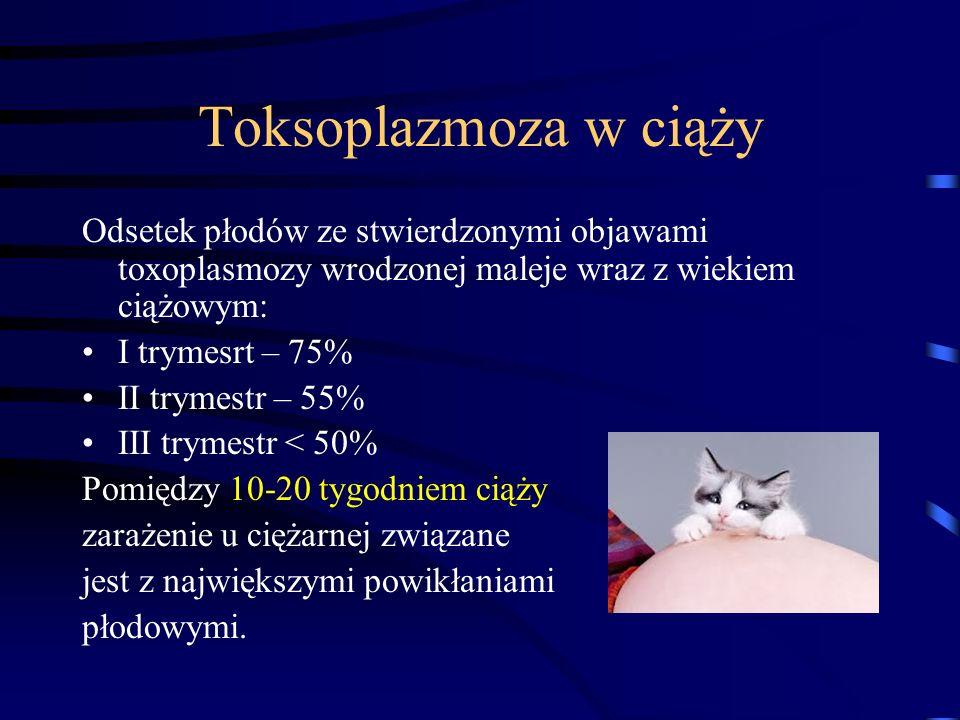 Toksoplazmoza w ciąży Odsetek płodów ze stwierdzonymi objawami toxoplasmozy wrodzonej maleje wraz z wiekiem ciążowym: I trymesrt – 75% II trymestr – 55% III trymestr < 50% Pomiędzy 10-20 tygodniem ciąży zarażenie u ciężarnej związane jest z największymi powikłaniami płodowymi.
