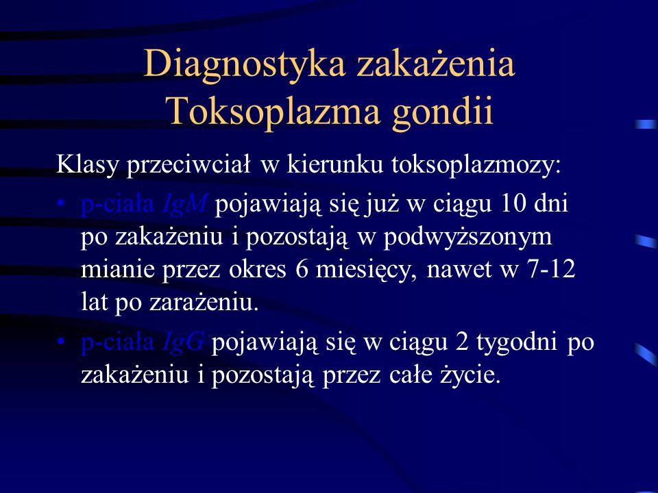 Diagnostyka zakażenia Toksoplazma gondii Klasy przeciwciał w kierunku toksoplazmozy: p-ciała IgM pojawiają się już w ciągu 10 dni po zakażeniu i pozostają w podwyższonym mianie przez okres 6 miesięcy, nawet w 7-12 lat po zarażeniu.