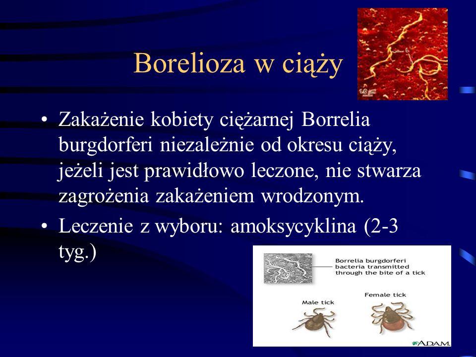 Borelioza w ciąży Zakażenie kobiety ciężarnej Borrelia burgdorferi niezależnie od okresu ciąży, jeżeli jest prawidłowo leczone, nie stwarza zagrożenia zakażeniem wrodzonym.