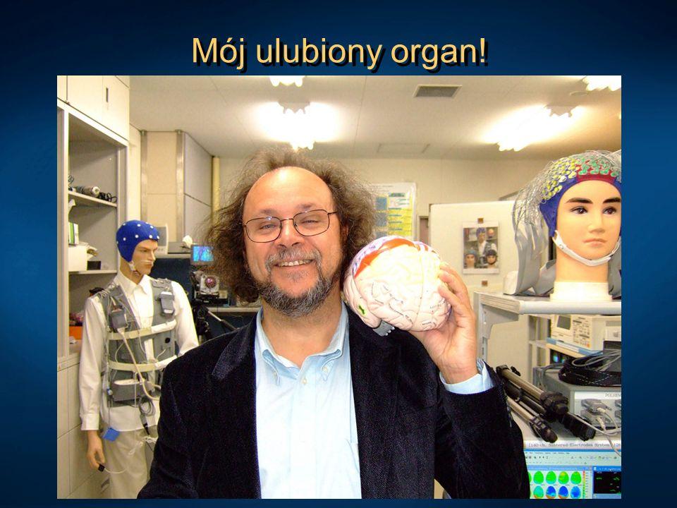 Mój ulubiony organ!