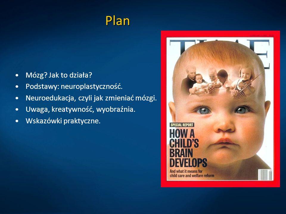 Plan Mózg? Jak to działa? Podstawy: neuroplastyczność. Neuroedukacja, czyli jak zmieniać mózgi. Uwaga, kreatywność, wyobraźnia. Wskazówki praktyczne.