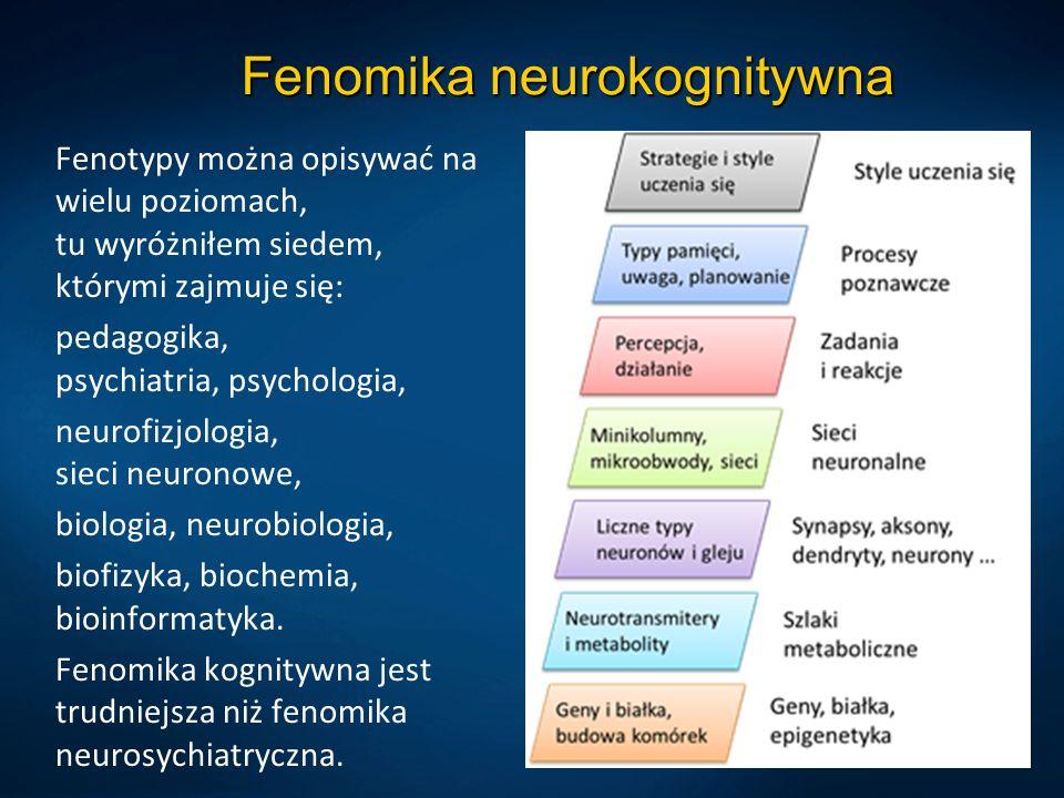 Fenomika neurokognitywna Fenotypy można opisywać na wielu poziomach, tu wyróżniłem siedem, którymi zajmuje się: pedagogika, psychiatria, psychologia, neurofizjologia, sieci neuronowe, biologia, neurobiologia, biofizyka, biochemia, bioinformatyka.