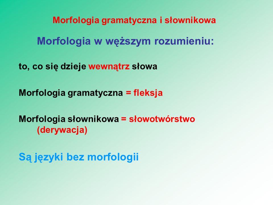 Morfologia w węższym rozumieniu: to, co się dzieje wewnątrz słowa Morfologia gramatyczna = fleksja Morfologia słownikowa = słowotwórstwo (derywacja) S