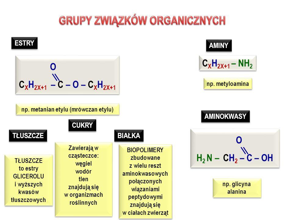 ALKANY ALKENY ALKINY WĘGLOWODORY nasycone nienasycone C X H 2X+2 C X H 2X C X H 2X – 2 ALKOHOLE monohydroksylowe C X H 2X+1 –O –H ALKOHOLANY C X H 2X+1 –O – Met.akt.