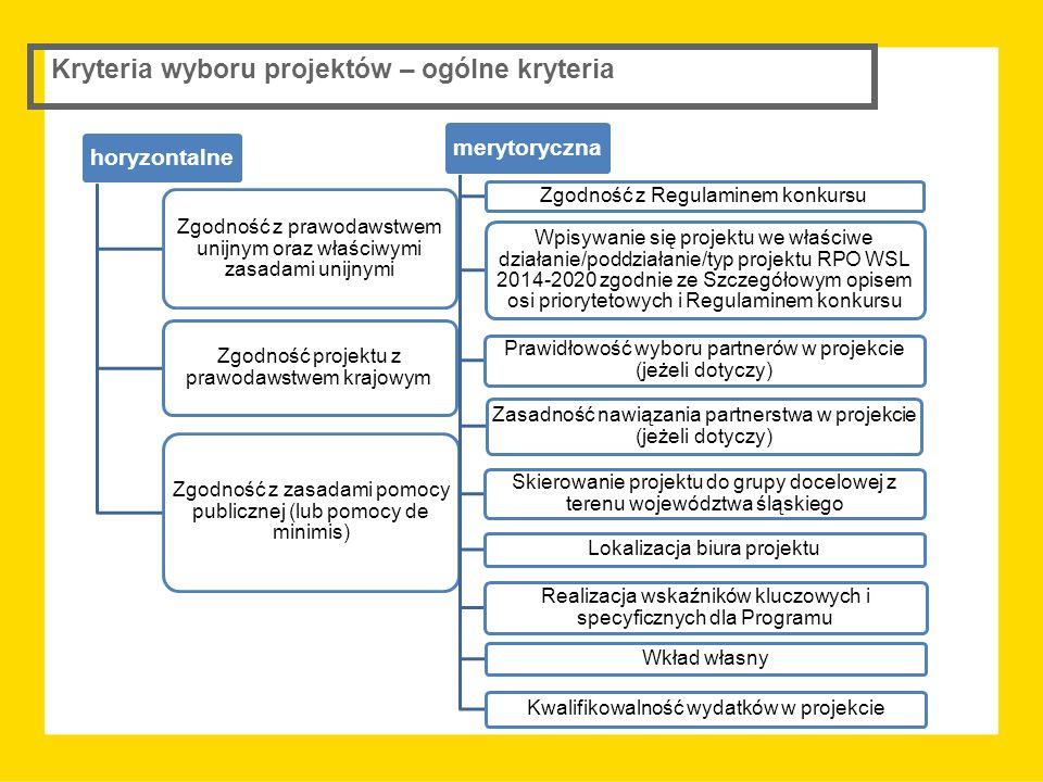 Kryteria wyboru projektów – ogólne kryteria horyzontalne Zgodność z prawodawstwem unijnym oraz właściwymi zasadami unijnymi Zgodność projektu z prawod