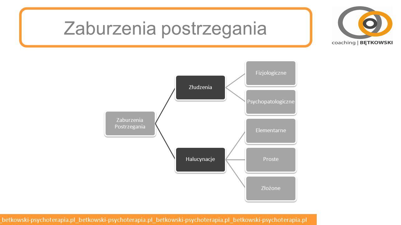betkowski-psychoterapia.pl_betkowski-psychoterapia.pl_betkowski-psychoterapia.pl_betkowski-psychoterapia.pl_betkowski-psychoterapia.pl Postacie schizofrenii o Schizofrenia paranoidalna – dominują urojenia i omamy (objawy pozytywne).