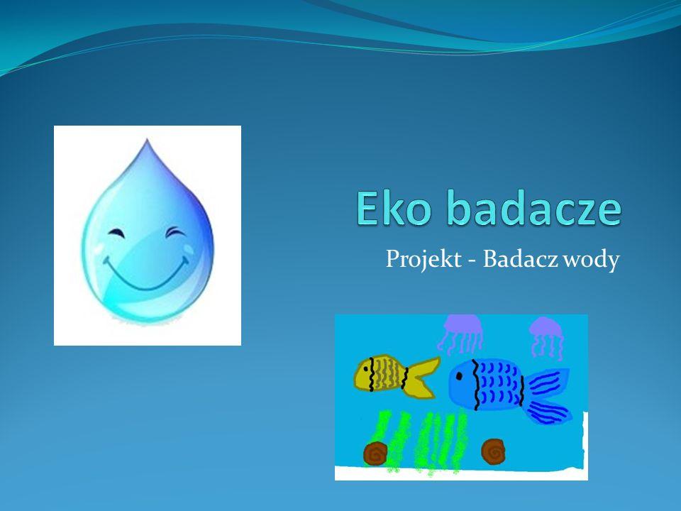 Projekt - Badacz wody