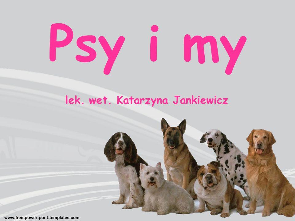 Spacer Zabawa – wspólnie z właścicielem lub innymi psami, aportowanie, bieganie.