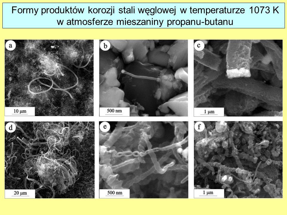 Formy produktów korozji stali węglowej w temperaturze 1073 K w atmosferze mieszaniny propanu-butanu
