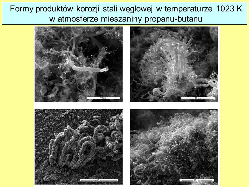 Formy produktów korozji stali węglowej w temperaturze 1023 K w atmosferze mieszaniny propanu-butanu