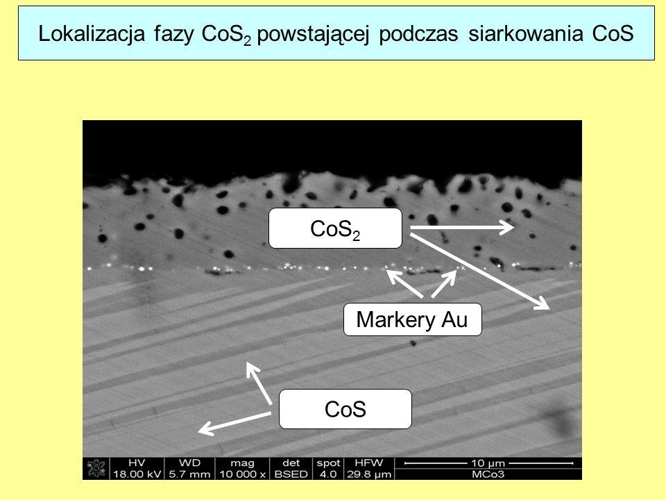 CoS 2 CoS Markery Au Lokalizacja fazy CoS 2 powstającej podczas siarkowania CoS