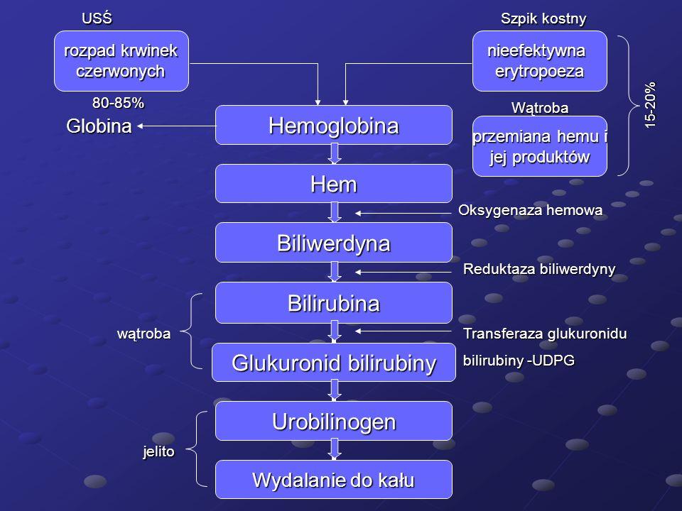 Globina rozpad krwinek czerwonych USŚ Szpik kostny Wątroba Oksygenaza hemowa przemiana hemu i jej produktów nieefektywnaerytropoeza Reduktaza biliwerd