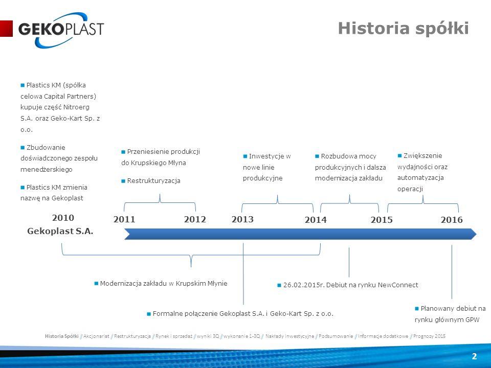 2 Historia spółki Gekoplast S.A. 2010 2015 201120122013 2014 Plastics KM (spółka celowa Capital Partners) kupuje część Nitroerg S.A. oraz Geko-Kart Sp
