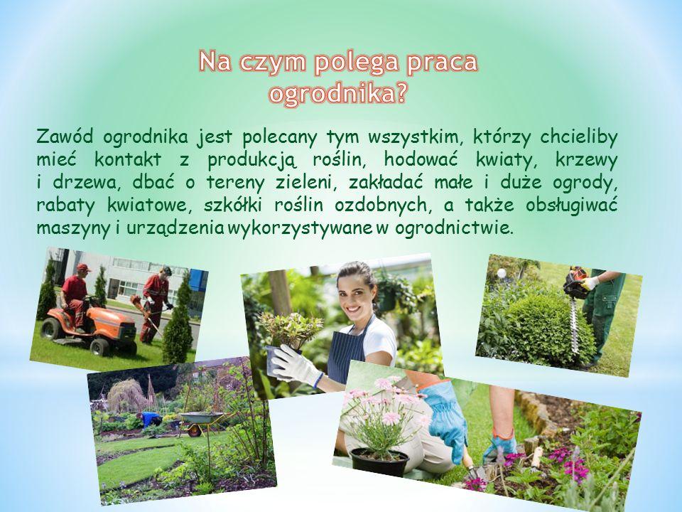 Zawód ogrodnika jest polecany tym wszystkim, którzy chcieliby mieć kontakt z produkcją roślin, hodować kwiaty, krzewy i drzewa, dbać o tereny zieleni, zakładać małe i duże ogrody, rabaty kwiatowe, szkółki roślin ozdobnych, a także obsługiwać maszyny i urządzenia wykorzystywane w ogrodnictwie.
