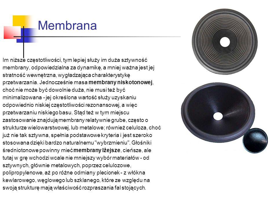 Membrana Im niższe częstotliwości, tym lepiej służy im duża sztywność membrany, odpowiedzialna za dynamikę, a mniej ważna jest jej stratność wewnętrzna, wygładzająca charakterystykę przetwarzania.