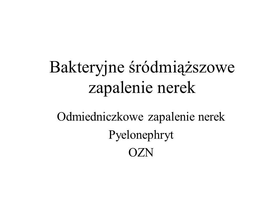 Bakteryjne śródmiąższowe zapalenie nerek Odmiedniczkowe zapalenie nerek Pyelonephryt OZN