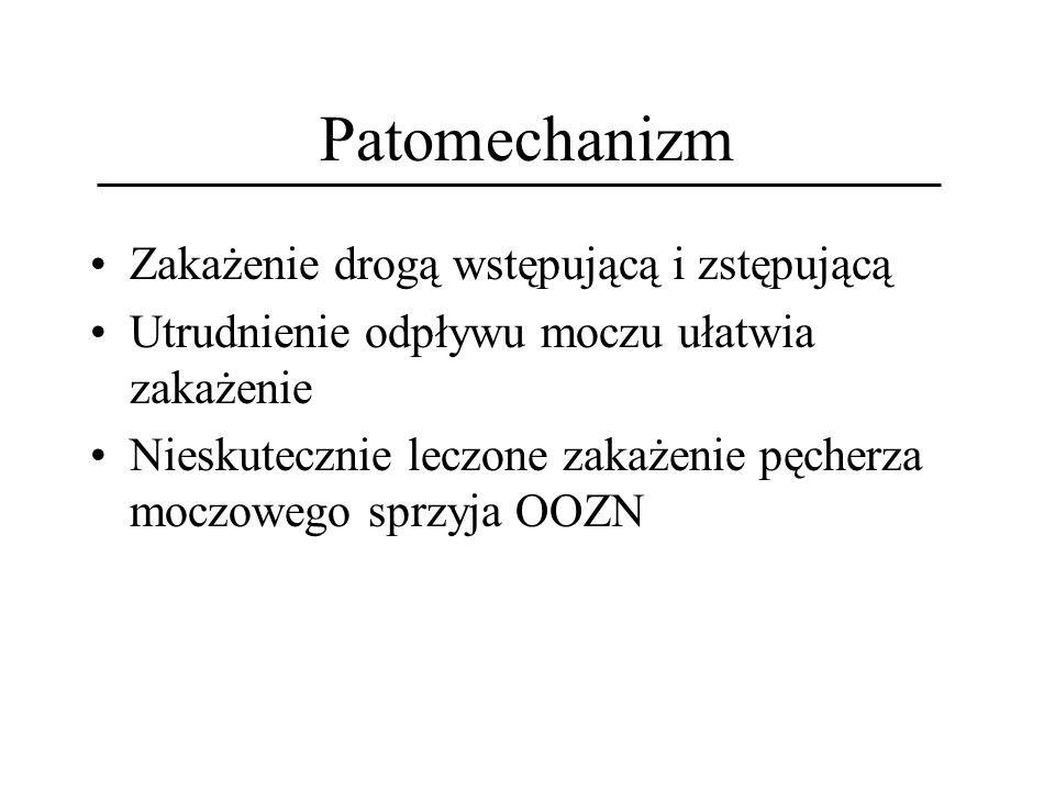 Patomechanizm Zakażenie drogą wstępującą i zstępującą Utrudnienie odpływu moczu ułatwia zakażenie Nieskutecznie leczone zakażenie pęcherza moczowego s