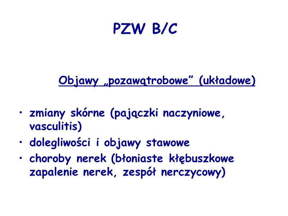 """PZW B/C Objawy """"pozawątrobowe (układowe) zmiany skórne (pajączki naczyniowe, vasculitis) dolegliwości i objawy stawowe choroby nerek (błoniaste kłębuszkowe zapalenie nerek, zespół nerczycowy)"""