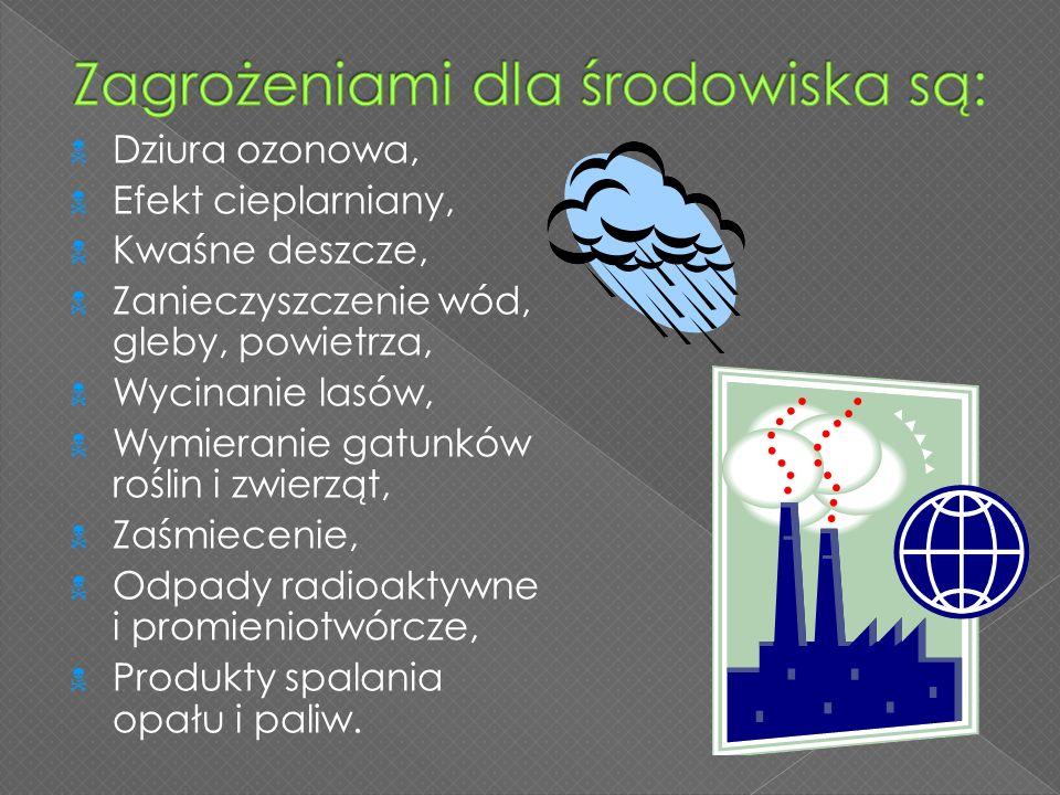  Dziura ozonowa,  Efekt cieplarniany,  Kwaśne deszcze,  Zanieczyszczenie wód, gleby, powietrza,  Wycinanie lasów,  Wymieranie gatunków roślin i