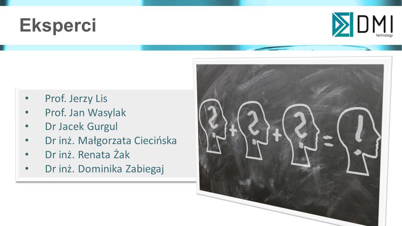 Eksperci Prof. Jerzy Lis Prof. Jan Wasylak Dr Jacek Gurgul Dr inż.
