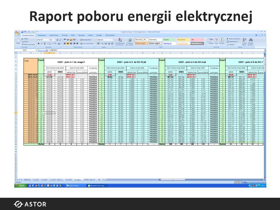 Raport poboru energii elektrycznej