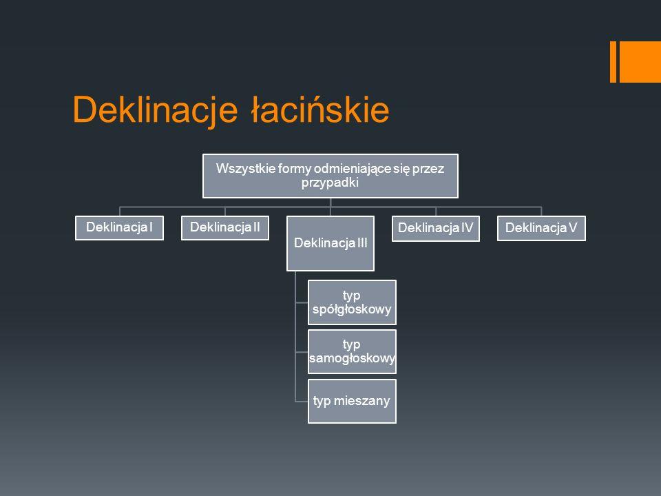 Deklinacje łacińskie Wszystkie formy odmieniające się przez przypadki Deklinacja IDeklinacja II Deklinacja III typ spółgłoskowy typ mieszany typ samog