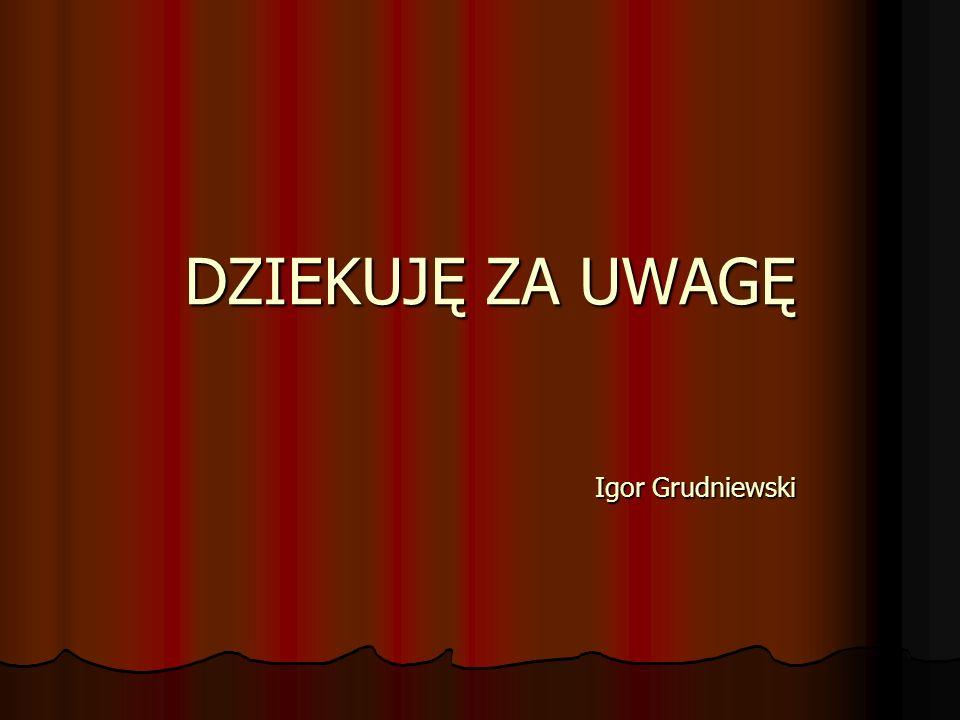 DZIEKUJĘ ZA UWAGĘ Igor Grudniewski DZIEKUJĘ ZA UWAGĘ Igor Grudniewski