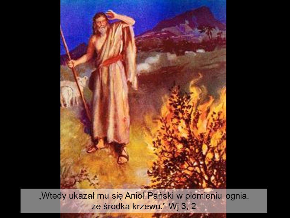 """""""Wtedy ukazał mu się Anioł Pański w płomieniu ognia, ze środka krzewu."""" Wj 3, 2"""
