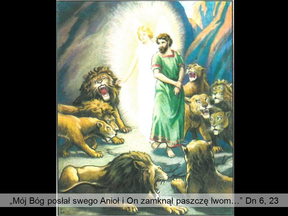 """""""Mój Bóg posłał swego Anioł i On zamknął paszczę lwom…"""" Dn 6, 23"""