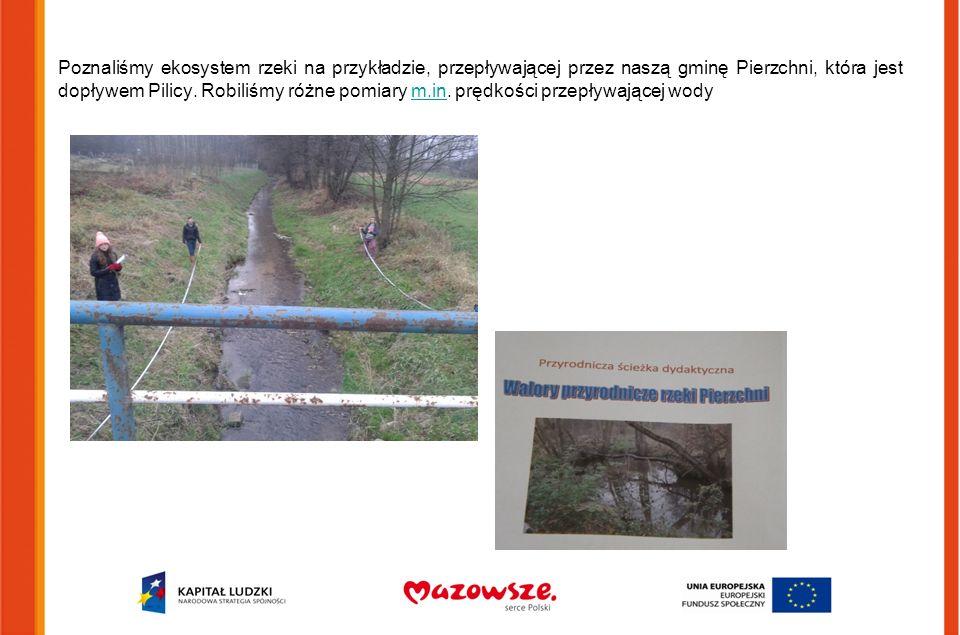 Poznaliśmy ekosystem rzeki na przykładzie, przepływającej przez naszą gminę Pierzchni, która jest dopływem Pilicy. Robiliśmy różne pomiary m.in. prędk