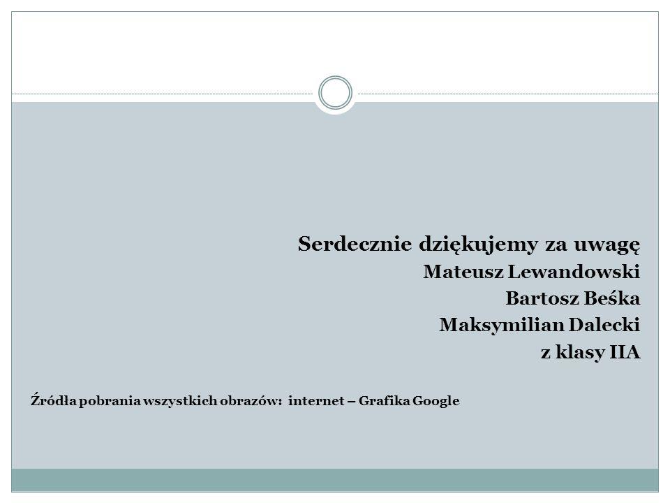 Serdecznie dziękujemy za uwagę Mateusz Lewandowski Bartosz Beśka Maksymilian Dalecki z klasy IIA Źródła pobrania wszystkich obrazów: internet – Grafik