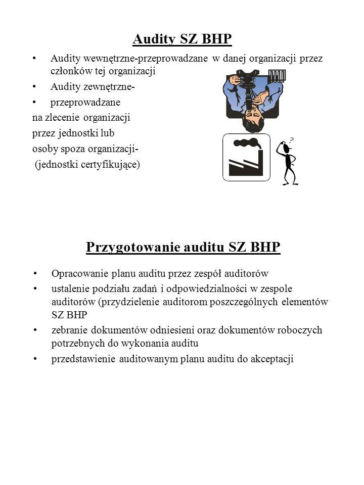 Audity SZ BHP Audity wewnętrzne-przeprowadzane w danej organizacji przez członków tej organizacji Audity zewnętrzne- przeprowadzane na zlecenie organi