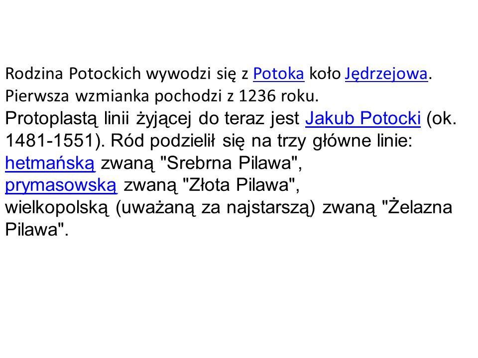 Rodzina Potockich wywodzi się z Potoka koło Jędrzejowa.PotokaJędrzejowa Pierwsza wzmianka pochodzi z 1236 roku. Protoplastą linii żyjącej do teraz jes