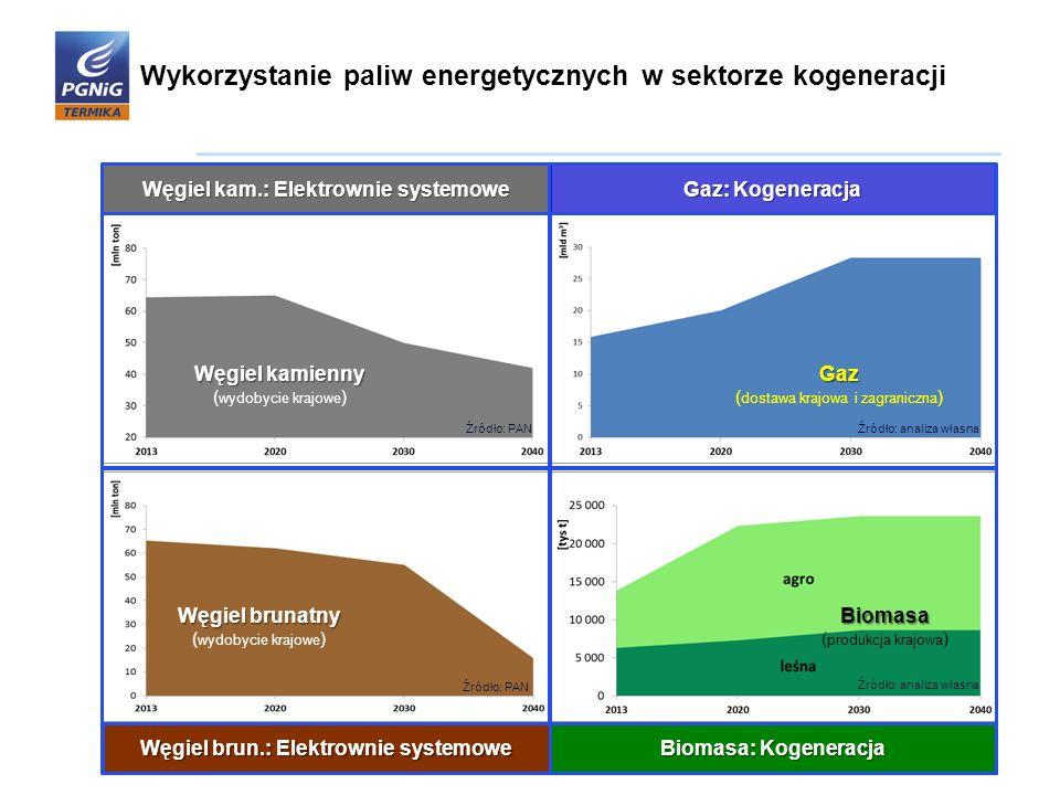 Węgiel kamienny ( wydobycie krajowe )Gaz ( dostawa krajowa i zagraniczna ) Biomasa Biomasa ( produkcja krajowa ) Węgiel kam.: Elektrownie systemowe Ga