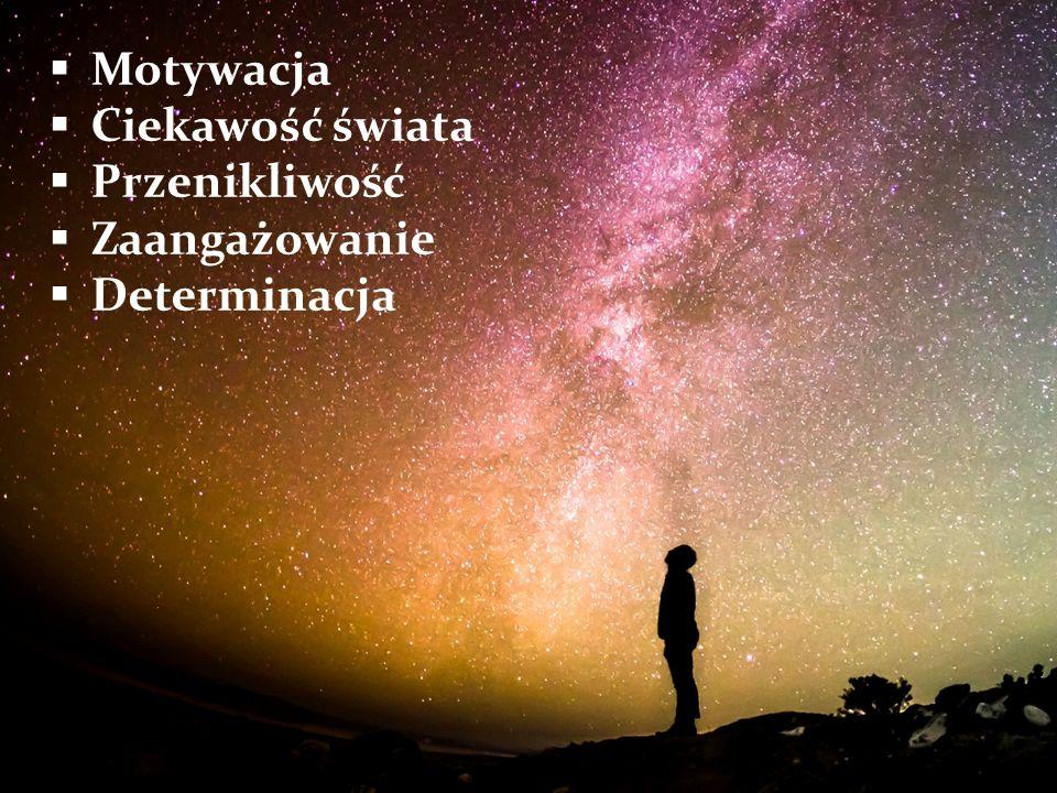  Motywacja  Ciekawość świata  Przenikliwość  Zaangażowanie  Determinacja