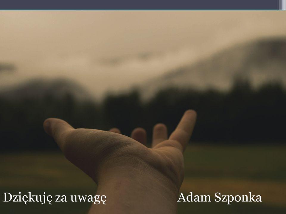 Dziękuję za uwagę Adam Szponka