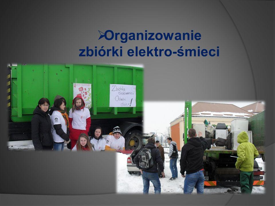 Organizowanie zbiórki elektro-śmieci