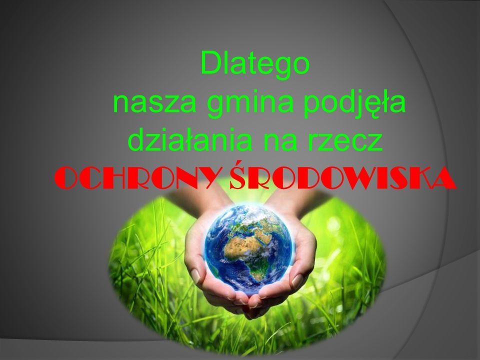  Organizowanie akcji o tematyce ekologicznej. DZIEŃ LASU DZIEŃ ZIEMI DZIEŃ WODY