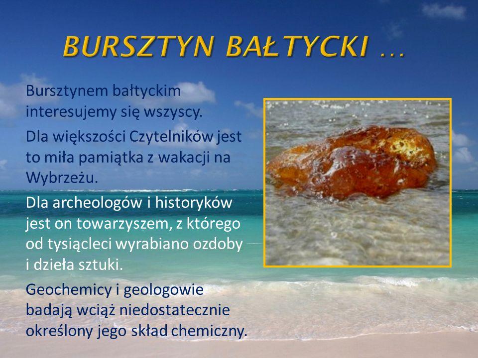 Bursztynem bałtyckim interesujemy się wszyscy. Dla większości Czytelników jest to miła pamiątka z wakacji na Wybrzeżu. Dla archeologów i historyków je