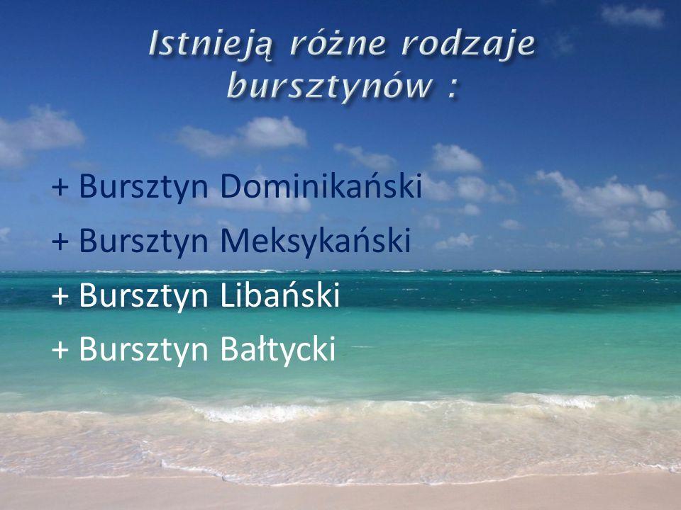 + Bursztyn Dominikański + Bursztyn Meksykański + Bursztyn Libański + Bursztyn Bałtycki