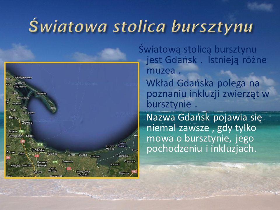 Światową stolicą bursztynu jest Gdańsk. Istnieją różne muzea. Wkład Gdańska polega na poznaniu inkluzji zwierząt w bursztynie. Nazwa Gdańsk pojawia si