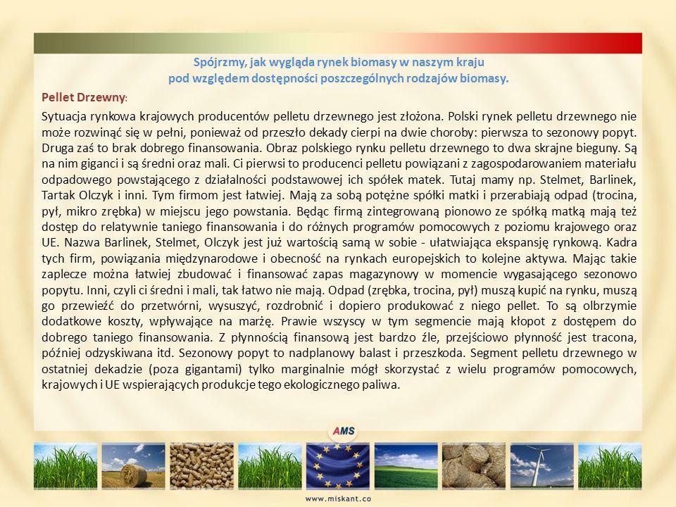 Spójrzmy, jak wygląda rynek biomasy w naszym kraju pod względem dostępności poszczególnych rodzajów biomasy.