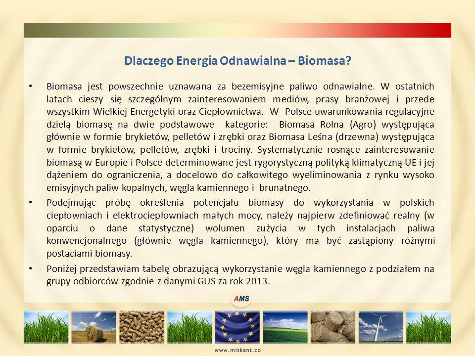 Dlaczego Energia Odnawialna – Biomasa.