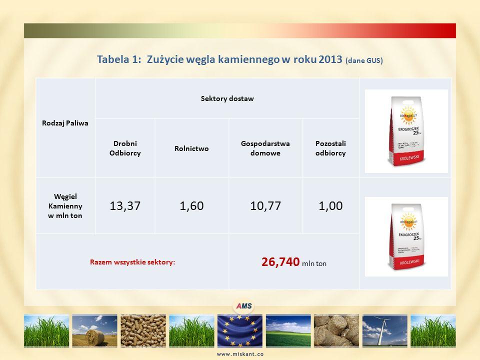 Tabela 1: Zużycie węgla kamiennego w roku 2013 (dane GUS) Rodzaj Paliwa Sektory dostaw Drobni Odbiorcy Rolnictwo Gospodarstwa domowe Pozostali odbiorcy Węgiel Kamienny w mln ton 13,371,6010,771,00 Razem wszystkie sektory: 26,740 mln ton