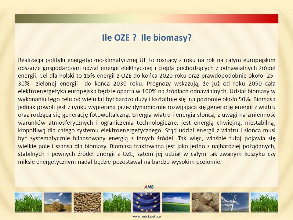 Ile OZE . Ile biomasy.