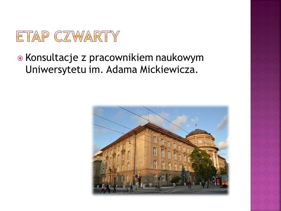  Konsultacje z pracownikiem naukowym Uniwersytetu im. Adama Mickiewicza.